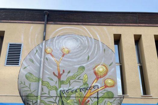 06.2021 #fullcolor - RE-ENACT - Mrfijodor I Polisportiva Gino Nasi - Modena